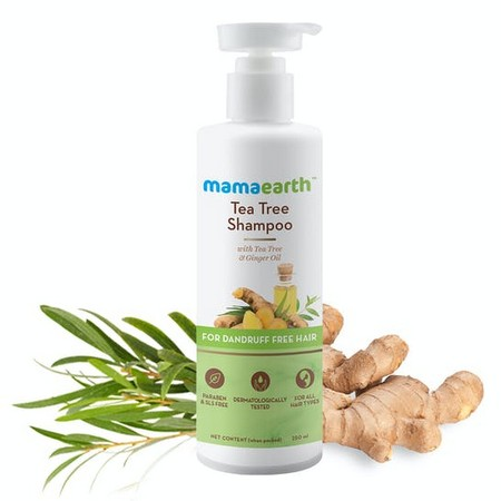 Mamaearth Tea Tree Shampoo for Dandruff Free Hair